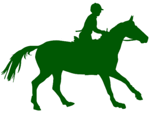 horse flat