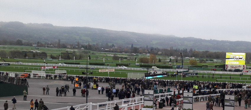 race in running at cheltenham novemeber meeting friday