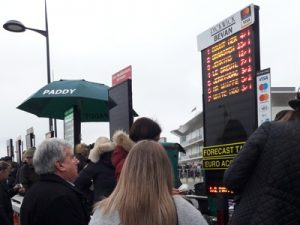 bookies-at-cheltenham