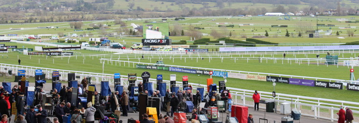 bookmakers preparing for raceday at the cheltenham festival