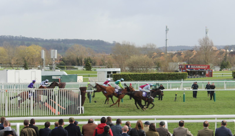 horses-land-after-jumping-cheltenham-fence