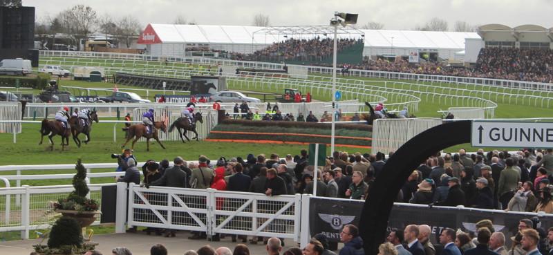 horses-running-past-stands-at-cheltenham