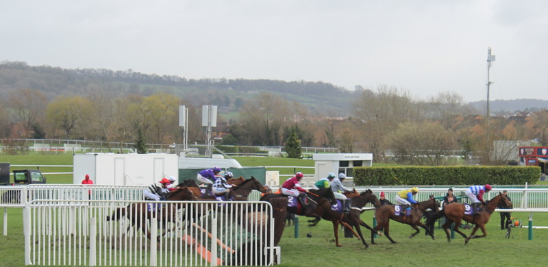 last-of-pack-jump-cheltenham-fence