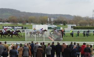 leader-jumps-final-fence-at-cheltenham