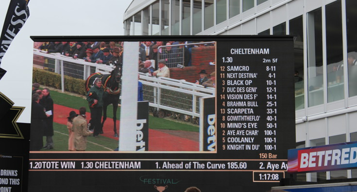race information board at cheltenham racecourse