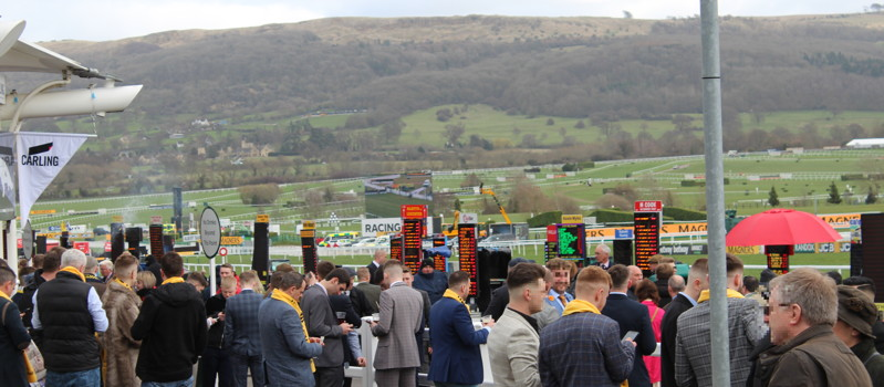 bookies at cheltenham before start of racing