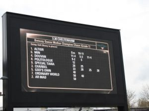 champion chase race board at cheltenham