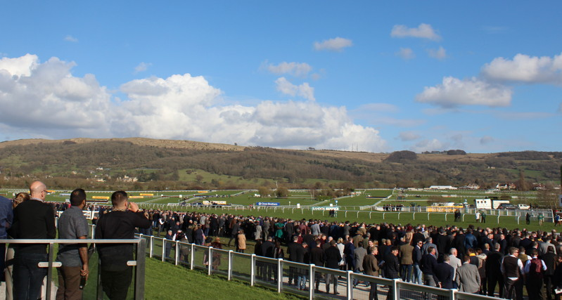 cheltenham festival with the sun out