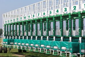 empty racing stalls