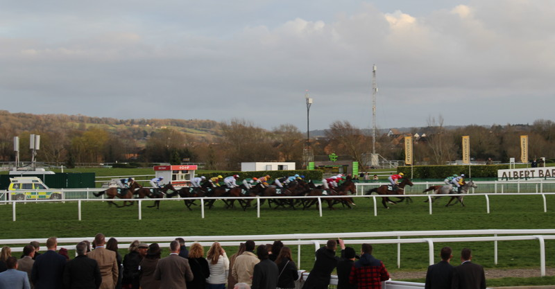 horses running along the straight in the final race at the cheltenham festival
