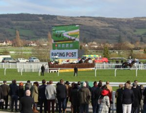 pack jump final fence behind the leader at cheltenham