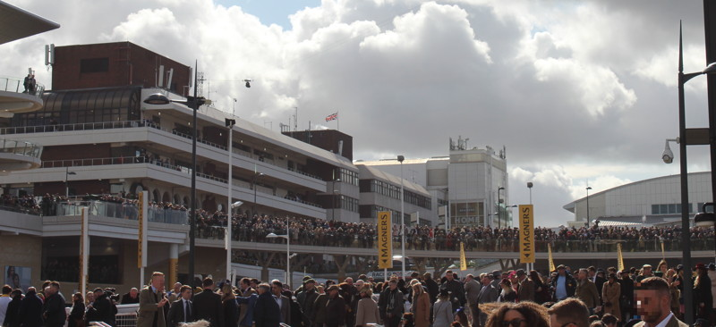 packed cheltenham racecourse concourse