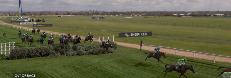 virtual grand national pack jumping a fence