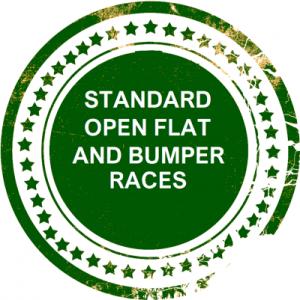 standard open flat and bumper races