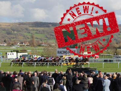 new cheltenham festival race
