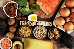 foods containing protein