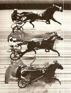 triple dead heat in harness racing