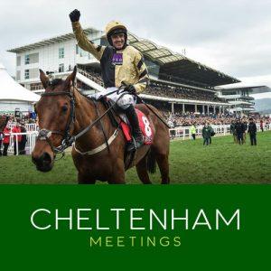cheltenham meetings