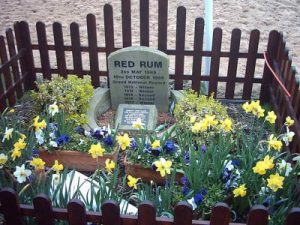 red rum grave